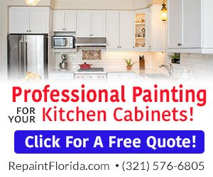 RePaint Florida - Banner Ad By AreaEcho